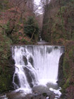 Waterfall in Alva Glen