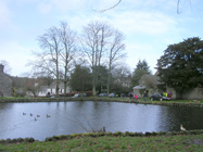 Duckpond at start and finish