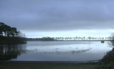 Monikie Reservoir (South)