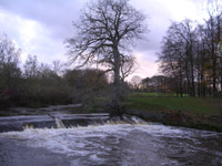 Weir on White Cart River